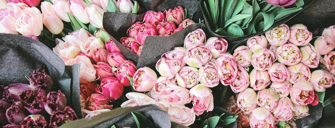 Verschiedene bunte Blumen