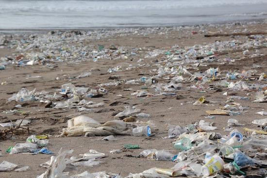 Schützt unsere Ozeane   rabatte coupon