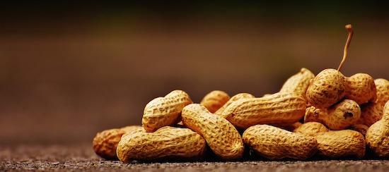 Erdnüsse sind gesund | rabatt coupons