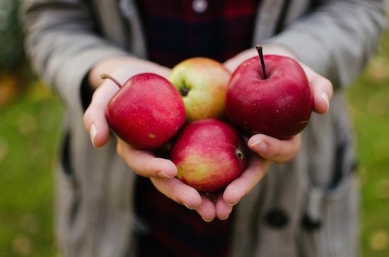 Apfel ist das Lieblingsobst | rabattecoupons