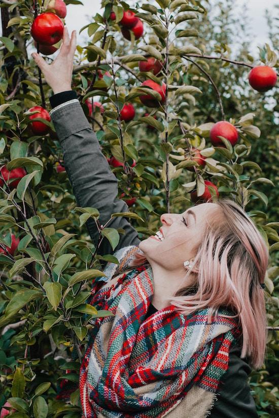 Apfel wirkt heilend | rabatte coupon