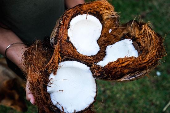Das Öffnen einer Kokosnuss | rabattecoupons