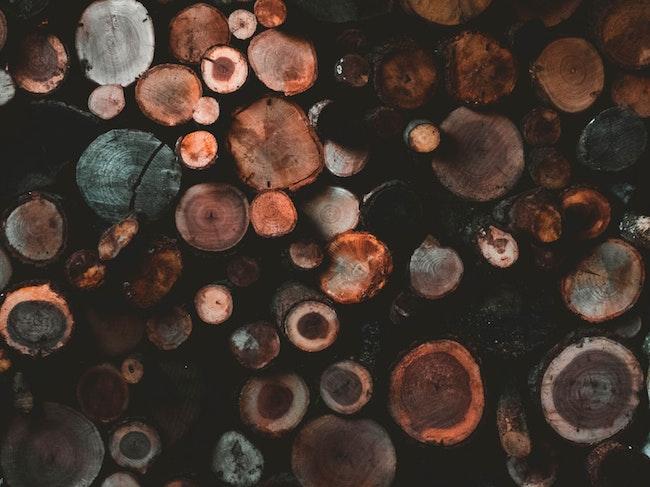 Bäume | parfümerie pieper Gutschein