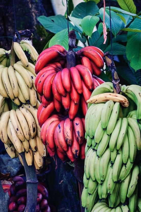 Banane | rabattecoupons