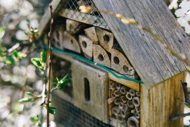 Ein natürliches Insektenhotel | rabatte coupons