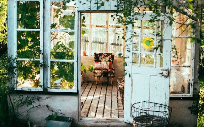 Hausmittel gegen Blattläuse | OBI Coupon | rabatte coupons