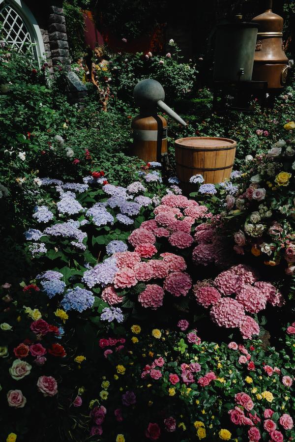 Garten winterfest machen | Blumen | www.rabatt-coupon.com