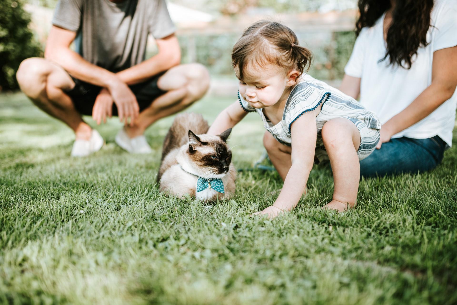 Haustier für kinder | www.rabatt-coupon.com