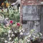 Gartenkalender 2021 – wann muss man was im Garten anlegen? 🌺