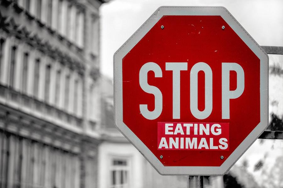 vegan leben | vegane Rezepte | www.rabatt-coupon.com